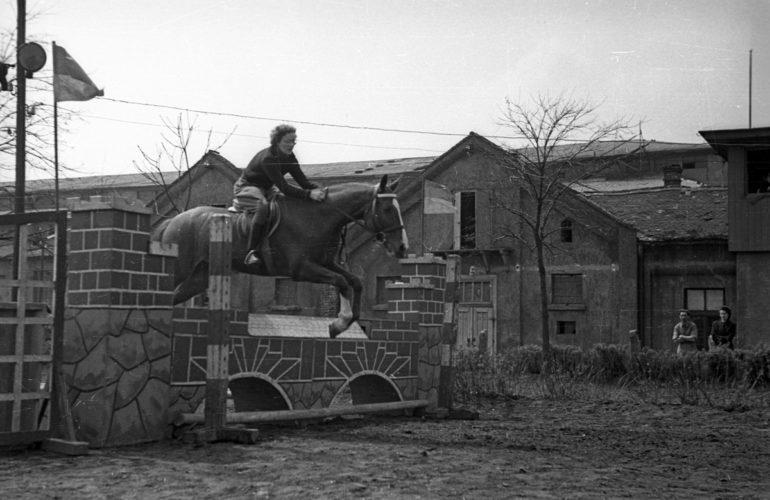 1954. Nemzeti Lovarda - Fotó: Fortepan